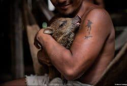 Ecuador Amazon Photo Tours