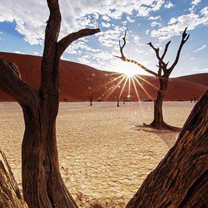 Namibia,-Sossusvlei-Photo-Tour